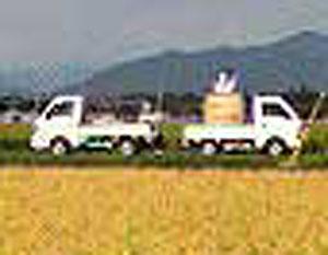 110908軽トラ.jpg